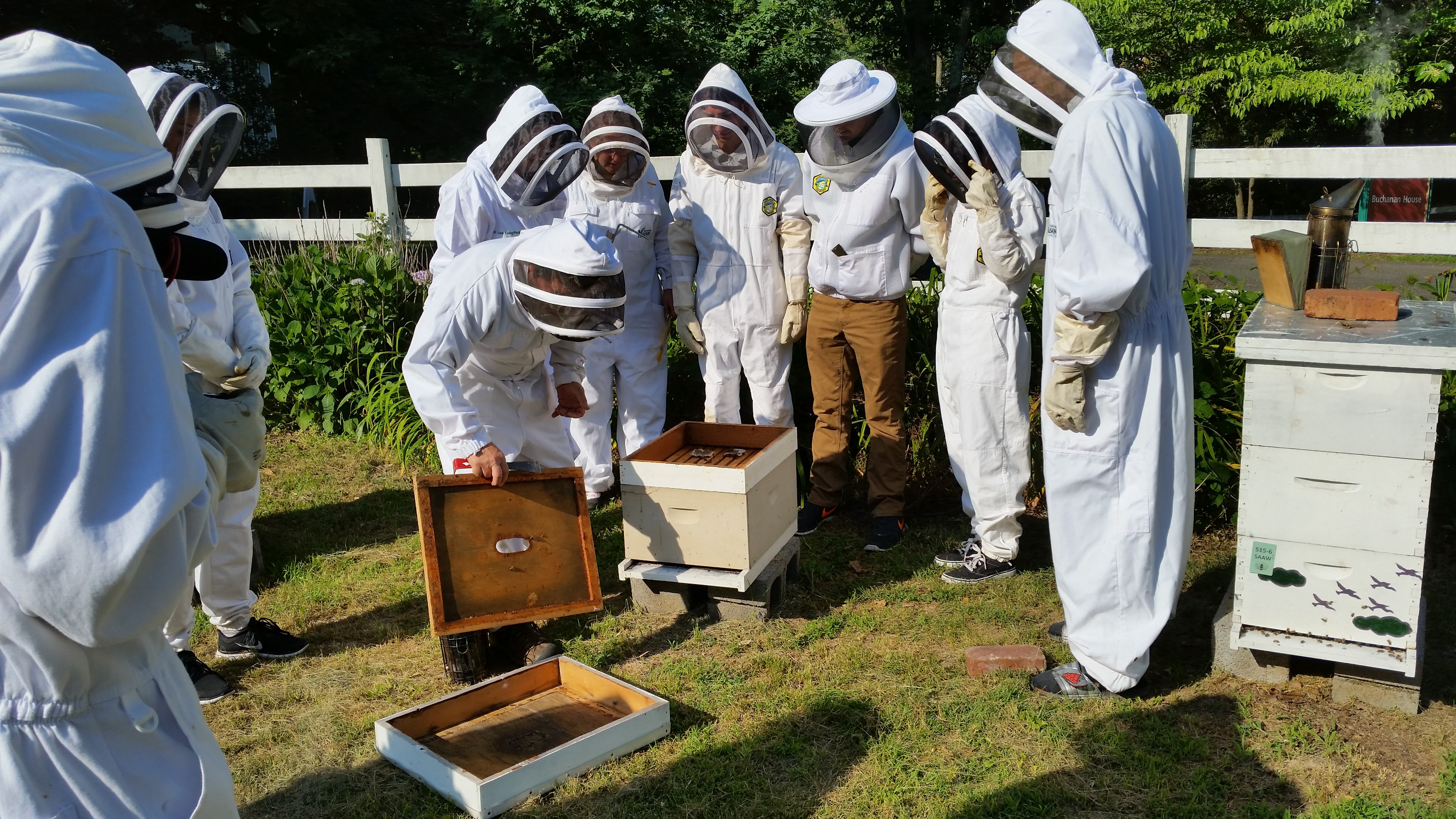 Grant for George Mason University Center Honey Bee Initiative